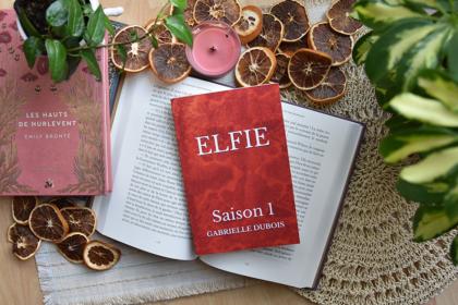 Elfie (T.1) de Gabrielle Dubois, livre autopublié